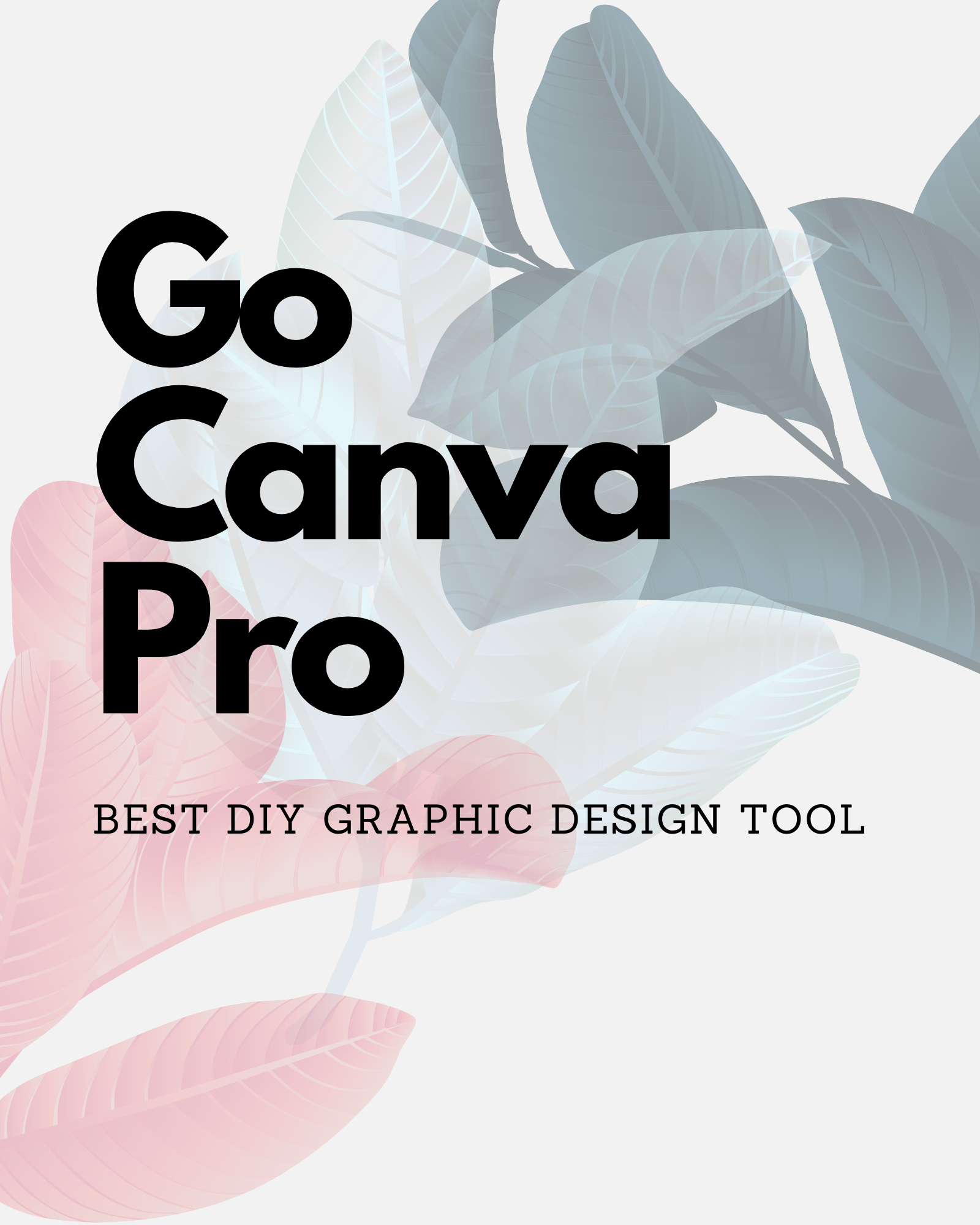 canva pro graphic design app